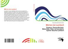 Bookcover of Mérion de Lambert