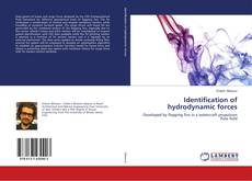 Bookcover of Identification of hydrodynamic forces
