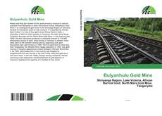 Buchcover von Bulyanhulu Gold Mine