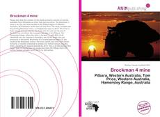 Bookcover of Brockman 4 mine