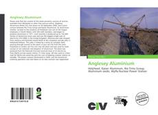Bookcover of Anglesey Aluminium