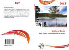 Bookcover of Malheur Lake
