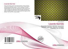 Portada del libro de Lizardo Garrido