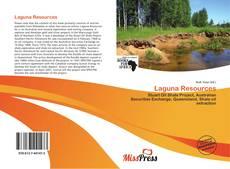 Bookcover of Laguna Resources