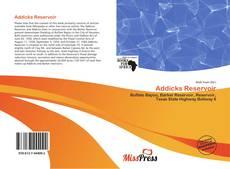 Bookcover of Addicks Reservoir