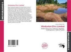 Hindustan Zinc Limited kitap kapağı