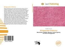 Bookcover of Bridgewater Collieries