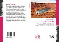 Bookcover of Consol Energy