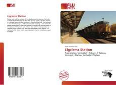 Buchcover von Līgciems Station