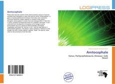 Capa do livro de Amtocephale