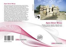 Bookcover of Apex Silver Mines
