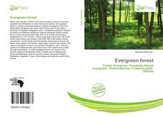 Bookcover of Evergreen forest