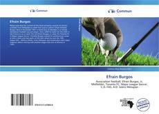 Portada del libro de Efrain Burgos