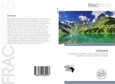 Lithosere kitap kapağı