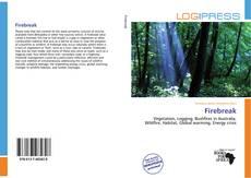 Firebreak kitap kapağı