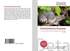 Bookcover of Echinolittorina Punctata