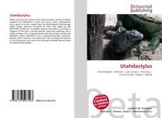 Bookcover of Utahdactylus