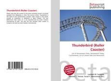 Thunderbird (Roller Coaster)的封面