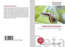 Bookcover of Imbricaria Punctata