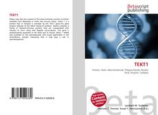 Bookcover of TEKT1