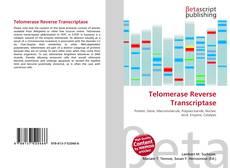 Bookcover of Telomerase Reverse Transcriptase