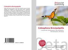 Copertina di Coleophora Brevipalpella