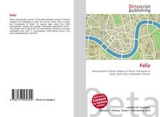 Bookcover of Feliz