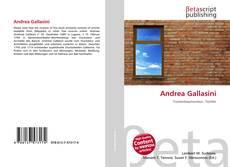 Capa do livro de Andrea Gallasini