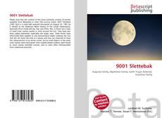 Bookcover of 9001 Slettebak