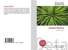 Bookcover of Andrea Molino