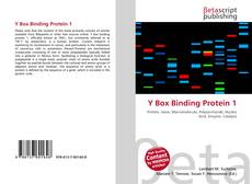 Bookcover of Y Box Binding Protein 1