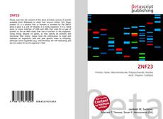 Bookcover of ZNF23