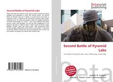 Bookcover of Second Battle of Pyramid Lake
