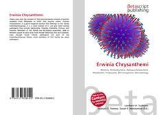 Bookcover of Erwinia Chrysanthemi