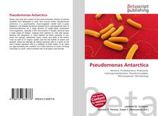 Bookcover of Pseudomonas Antarctica