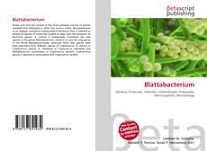 Buchcover von Blattabacterium