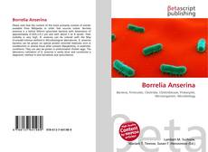 Bookcover of Borrelia Anserina