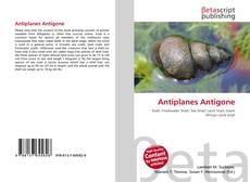 Bookcover of Antiplanes Antigone