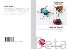 Bookcover of Soldier Beetle