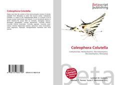 Bookcover of Coleophora Colutella
