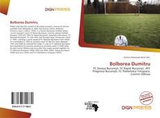 Bolborea Dumitru kitap kapağı