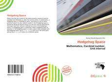 Bookcover of Hedgehog Space