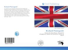 Richard Plantagenêt kitap kapağı