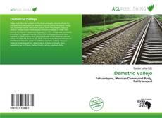 Bookcover of Demetrio Vallejo