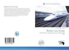 Capa do livro de Maiden Lane Bridge