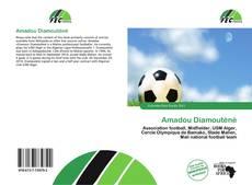 Amadou Diamouténé kitap kapağı