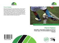 Florin Fabian的封面