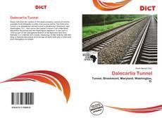 Dalecarlia Tunnel的封面