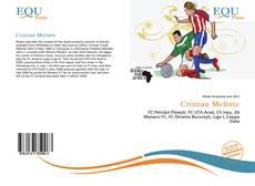 Bookcover of Cristian Melinte