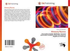 Bookcover of Amaury Nunes